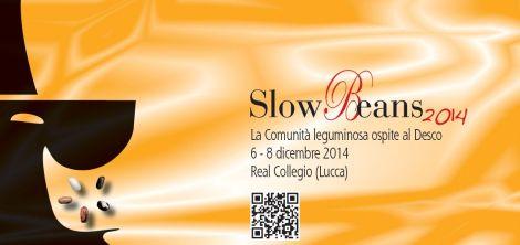 slowbeanscard