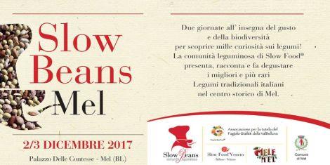 Slow Beans 2017 a Mel - banner
